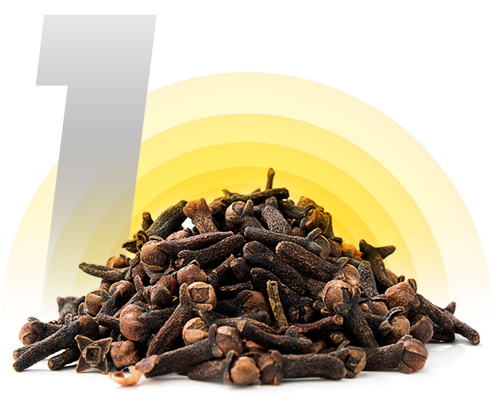 Cloves and Eugenol